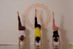 Yoga Charlottenburg Berlin - Adha Adho Mukha Vriksasana